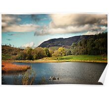Ireland - Lakeside Vista Poster