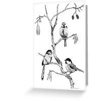 Small Garden Birds Greeting Card