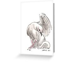 Sketch -- Mythological House Griffin, Dove Variety Greeting Card