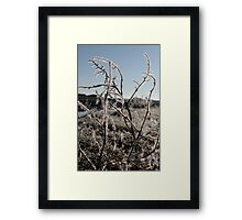 icy twigs and grass in snow against blue river and sky Framed Print