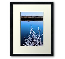 icy twigs in snow against cold blue sky and river Framed Print