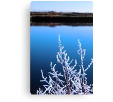 icy twigs in snow against cold blue sky and river Canvas Print