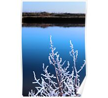 icy twigs in snow against cold blue sky and river Poster