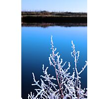 icy twigs in snow against cold blue sky and river Photographic Print
