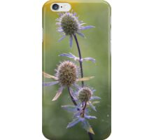 Autumn Morning iPhone Case/Skin