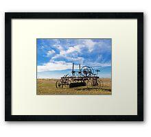 Prairie Fossil Framed Print