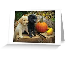 What do you think? Greeting Card
