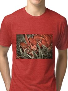 Old rusty Manual iron plough  Tri-blend T-Shirt