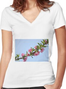Pink blossoms on a Peach tree in an orchard.  Women's Fitted V-Neck T-Shirt
