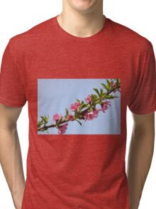 Pink blossoms on a Peach tree in an orchard.  Tri-blend T-Shirt