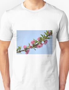 Pink blossoms on a Peach tree in an orchard.  T-Shirt