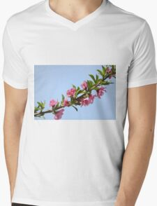 Pink blossoms on a Peach tree in an orchard.  Mens V-Neck T-Shirt