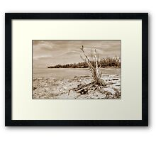 The Sentinel at Coral Harbour in Nassau, The Bahamas Framed Print