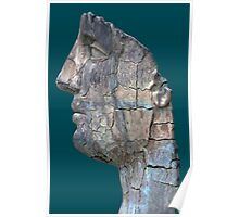 Cracked Head Sculpture, Boboli Gardens, Florence, Italy Poster
