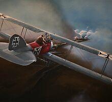 Albatros by PaulReeves