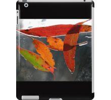 The Colours of Nature, Cradle Mountain, Tasmania, Australia. iPad Case/Skin