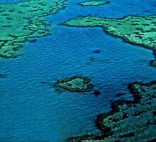 Heart Reef - Great Barrier Reef by Renee Hubbard Fine Art Photography