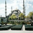 blue mosque by natalie angus