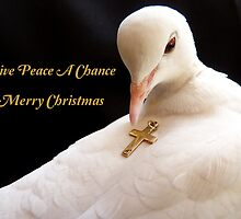 Give Peace A Chance - Merry Christmas - White Dove by AndreaEL