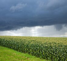Storm over cornfield in Southern Germany by Ian Middleton