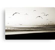 Birds at Newport Canvas Print