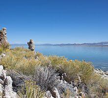 Mono Lake by Paul Roberts