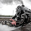 Steam by Jon Bradbury