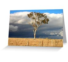 Storm clouds & tree Greeting Card