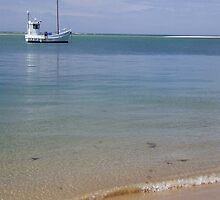 Fishing Boat Inverloch  by Andrew Turley