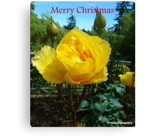 Yellow for Christmas Canvas Print