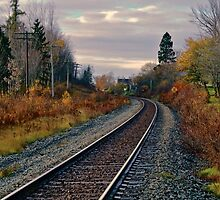 Railroad Tracks by Shawna Mac