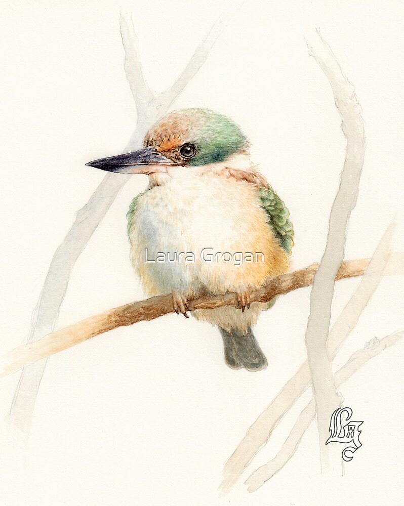 Sacred Kingfisher (Todiramphus sanctus) by Laura Grogan