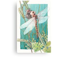 Dragonfly metamorphosis Canvas Print