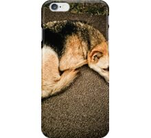 Dog disguised as a fox [ iPad / iPod / iPhone Case ] iPhone Case/Skin