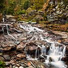 ~ the mountain stream ~ by Adriana Glackin