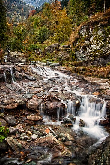 ~ the mountain stream ~ by Adriana Glackin