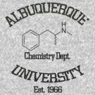 Albuquerque University - Breaking Bad by richobullet