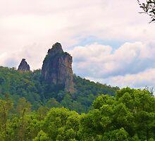 Nimbin Rocks ,Country NSW  by Virginia  McGowan