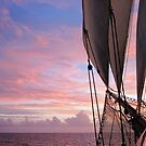 Sailing into the Dawn by Lucy Hollis