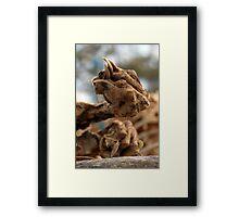 untitled #252 Framed Print