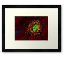 macro flower red green duo Framed Print