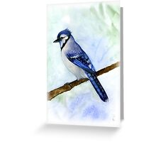blue jay on a branch handmade aquarelle Greeting Card