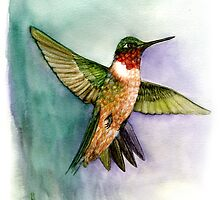 hummingbird in flight handmade aquarelle by Veera Pfaffli