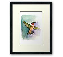 hummingbird in flight handmade aquarelle Framed Print