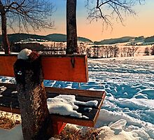 View into winter scenery by Patrick Jobst