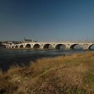 Pont Jacques Gabriel, Blois, France, Europe 2012 by muz2142