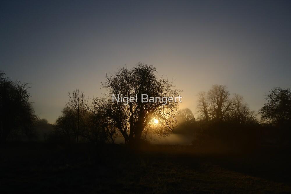 Misty Dawn by Nigel Bangert