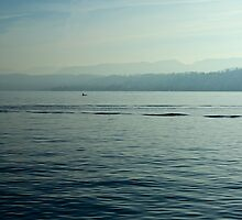 Lake Zurich, Zurich, Switzerland by Mihaela Limberea