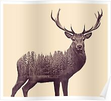 Double Exposure Deer  Poster