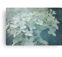 Veiled Beauty Canvas Print